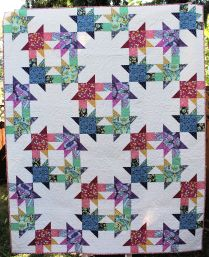 Hot House Quilt Kit-Craftsy